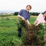 新しく農業で起業するための最初のステップとは